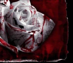 Ungkapan Hati Terakhir Tentang Sakit Hati....